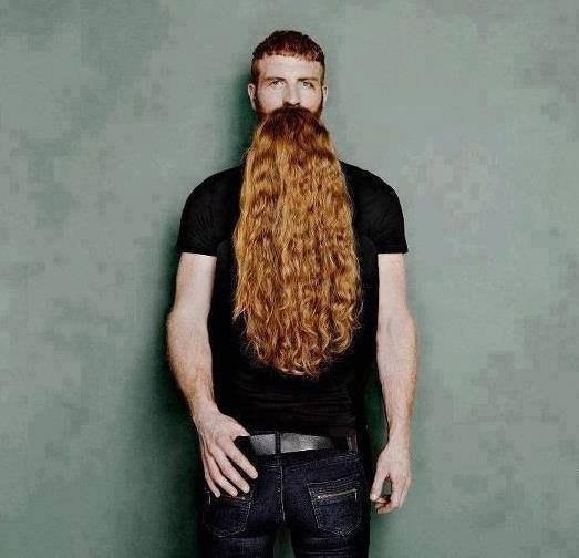 бородачи, бородатые, мужчина с бородой
