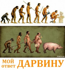 Дарвин, история, креационизм, теория, эволюция, анализ, критика, правда, динозавры, обезьяны, сотворение мира, промысел, Вначале было слово, Ной, ковчег, природа, гармония, зоопарк, деградация, естественный отбор, обратный отбор, ДНК, микробиология, Библия, Бытие, мироздание, Фукусима, протест, Кент Хованд, youtube