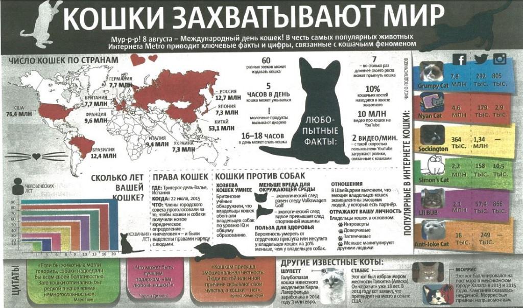 кошки, численность, статистика, мир, США, Россия
