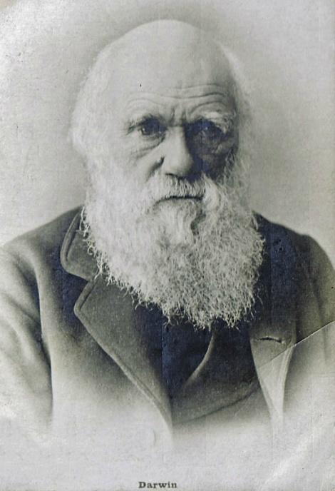 Чарлз Дарвин. Почтовая карточка начала ХХ века
