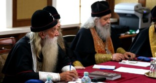 Совет Митрополии РПСЦ